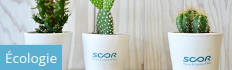 Goodies cadeaux ecologiques ecofriendly durables